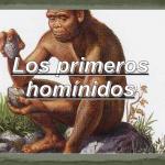 Los Homínidos: Colegio Guzman el Bueno