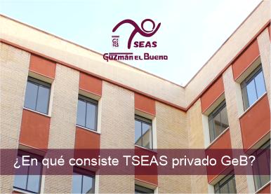 ¿EN QUÉ CONSISTE TSEAS privado GeB?